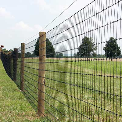 A wire fence in a field.