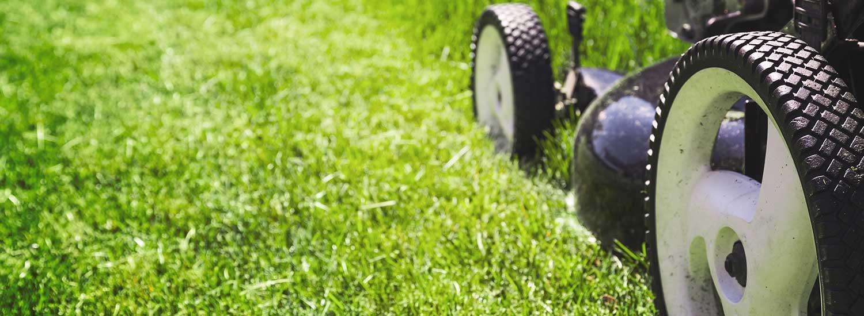 A mower mowing grass.