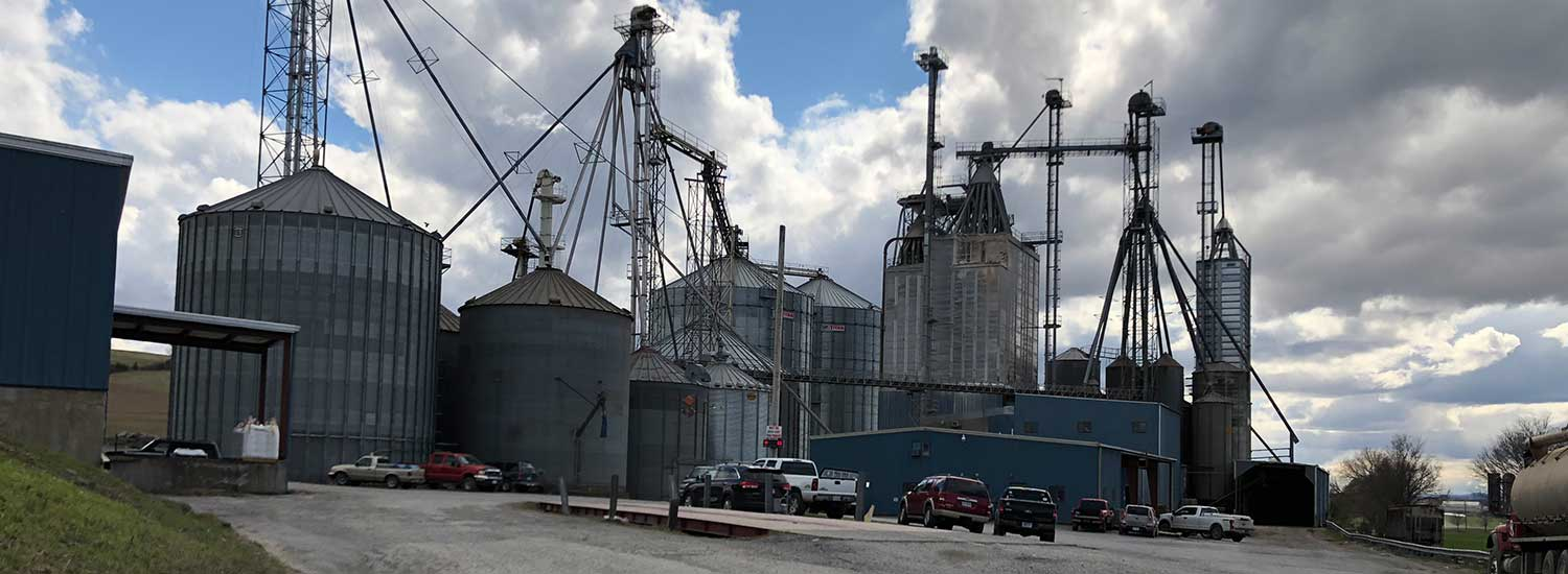 An exterior image of a mill.