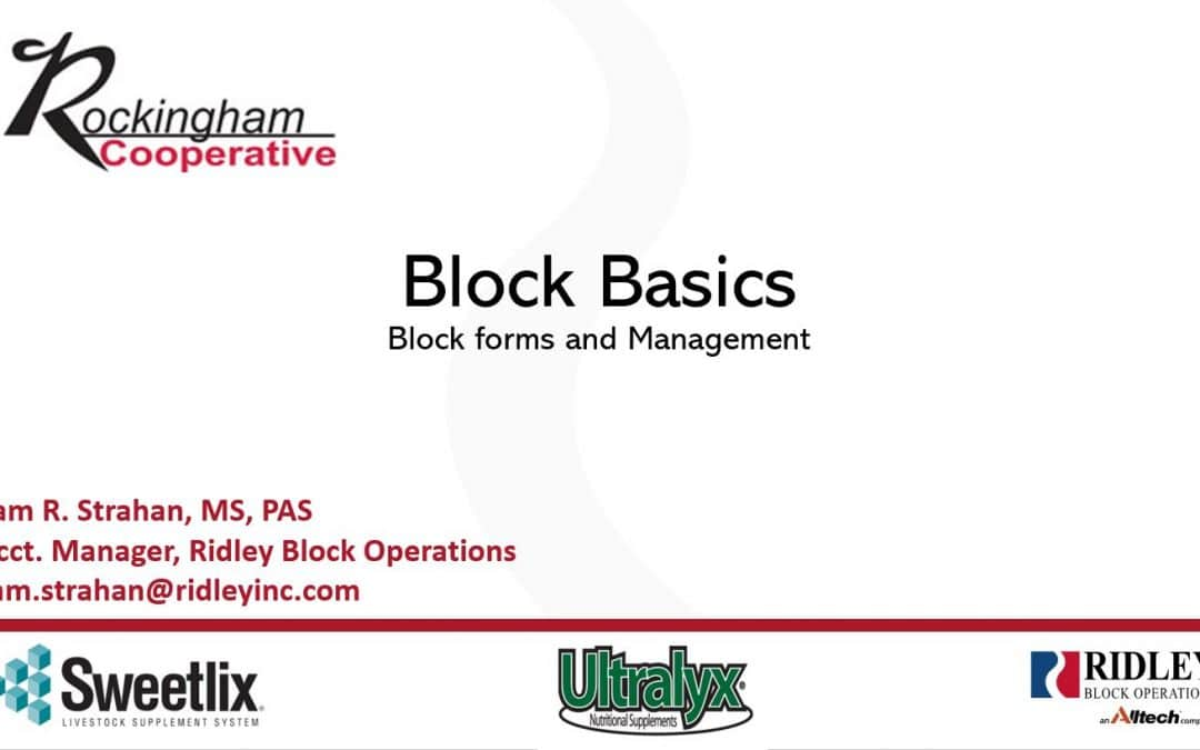 Block Math and Block Basics – Sponsored by Ridley